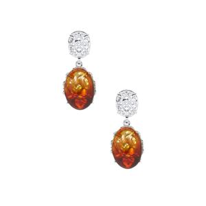 Baltic Ombre Amber (12x17mm) Earrings  in Sterling Silver