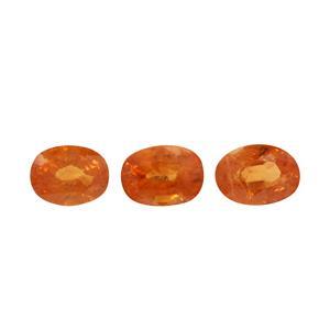 Mandarin Garnet  2.50cts