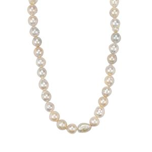 Golden South Sea Cultured Pearl Sterling Silver Graduated Bead Necklace