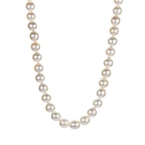 South Sea Cultured Pearl (8.5x9.5mm) Sterling Silver Necklace.