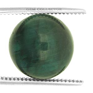Cats Eye Tourmaline GC loose stone