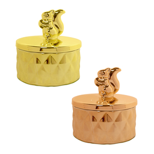 Squirrel World Wildlife Ceramic Trinket Box