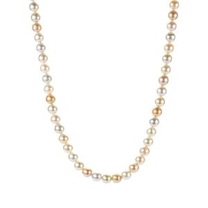 South Sea & Golden South Sea Cultured Pearl Necklace in Sterling Silver (8 x 8mm)
