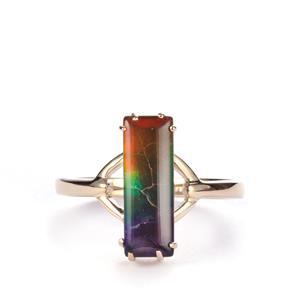 AA Ammolite Ring in 9K Gold (14 x 4.5mm)
