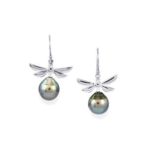 Tahitian Cultured Pearl Earrings in Sterling Silver