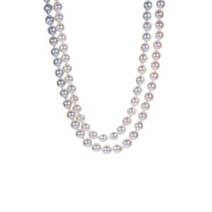 Akoya Ombre Cultured Pearl Necklace in Sterling Silver (8 X 7mm)