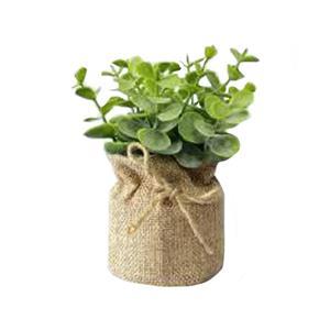 Artificial Eucalyptus in Pot
