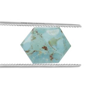 Cochise Turquoise GC loose stone  15.65cts (CP)