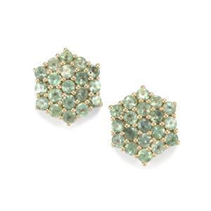 Alexandrite Earrings in 9K Gold 1.11cts