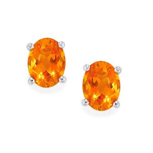 Madeira Citrine Earrings in Platinum Plated Sterling Silver 2.32cts