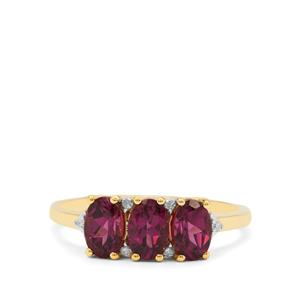 Comeria Garnet Ring with Diamond in 9K Gold 1.70cts