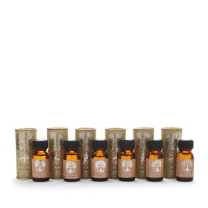 Tree of Life Fragrance Oil 15ml - Available in 6 Fragrances