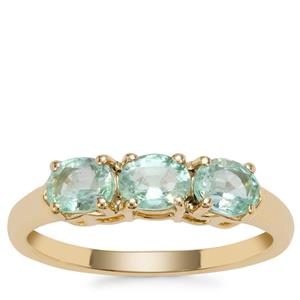 Siberian Emerald Ring in 9K Gold 1.02cts