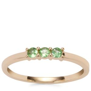 Tsavorite Garnet Ring in 9K Gold 0.18ct