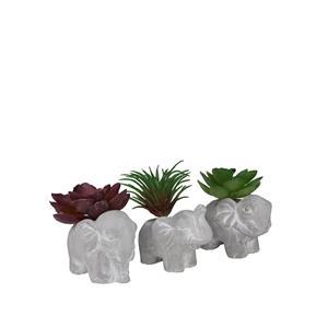 Faux Succulent in Elephant Pot 7cm