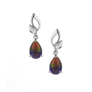 AA Ammolite Earrings in Sterling Silver (9x5.50mm)