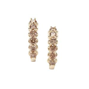 Argyle Diamond Earrings in 9K Gold 1.04ct