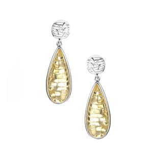 Baltic Champagne Amber (10x16mm) Earrings in Sterling Silver