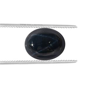 Blue Star Sapphire GC loose stone  3.65cts