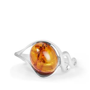 Baltic Cognac Amber Ring in Sterling Silver (9.50 x 7.50mm)