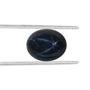 Blue Star Sapphire Loose stone  2.50cts