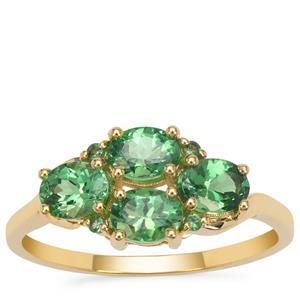 Tsavorite Garnet Ring in 9K Gold 1.50cts