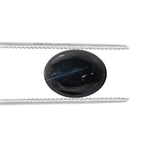 Blue Star Sapphire Loose stone  2.55cts