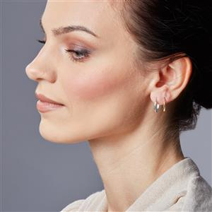 Molte Mini Horseshore Hoop Earrings in 9K White Gold