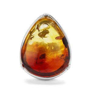 Baltic Ombre Amber Ring in Sterling Silver (22x18mm)