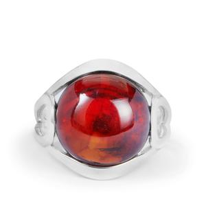 Baltic Cherry Amber (14x14mm) Ring in Sterling Silver