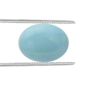 Sleeping Beauty Turquoise Loose stone  2.25cts