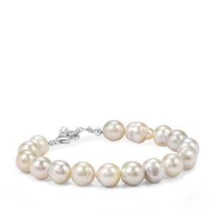 Golden South Sea Cultured Pearl Graduated Bead Bracelet in Sterling Silver (8mm)
