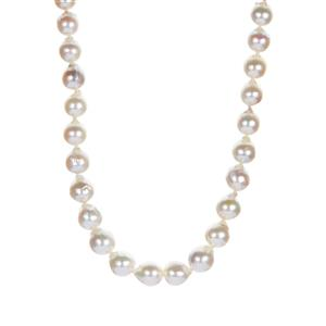 Akoya Cultured Pearl Graduated Necklace  in Sterling Silver