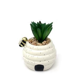 Honey Jar Succulent Planter