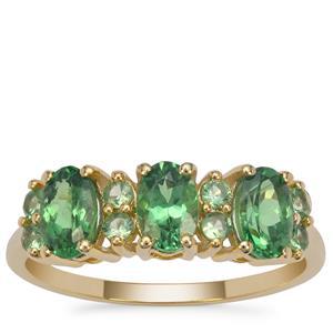 Tsavorite Garnet Ring in 9K Gold 1.70cts
